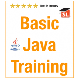 Basic Java Live Online Training
