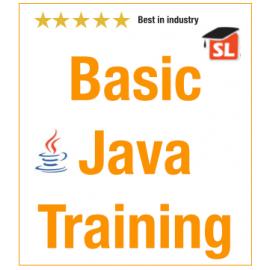 Basic Java Live Online Training